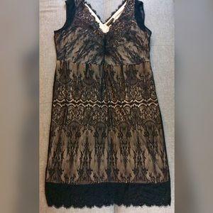 981aca73a33 Lane Bryant Dresses - Lace scalloped black holiday lane Bryant dress 24W